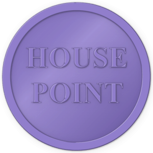 plastic tokens - House Point token Purple