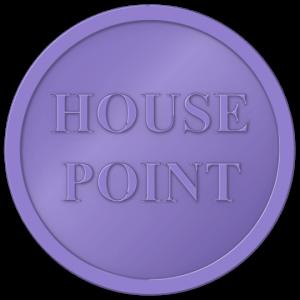plastic tokens - House Point token Purple